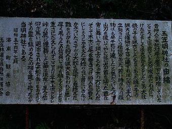 Tamagasajinja02