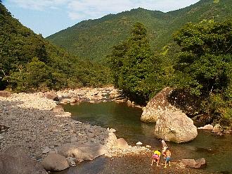 200713kujira1