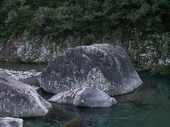 Kujiraiwa01_1